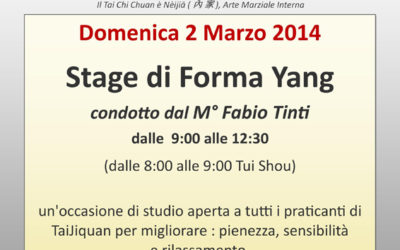 Stage in forma Yang – 1000 ° Fabio Tinto